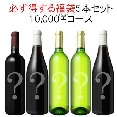 ワインセット 必ず得する 福袋 5本 セット 10000円 家飲み 中身は内緒