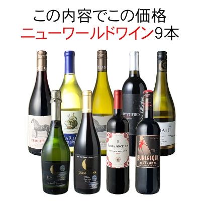ワインセット 渾身 ニューワールドワイン 9本 セット チリ 南アフリカ オーストラリア アルゼンチン 型破り