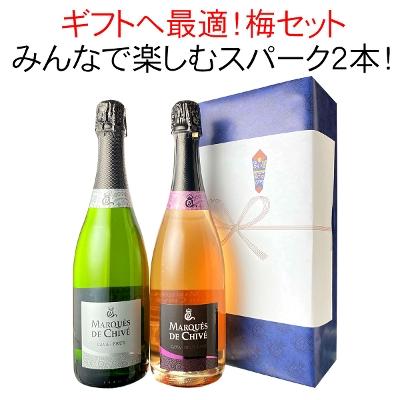 ワイン プレゼント ギフト 梅 セット 涼を楽しむスパークリングワイン2本! 3000円 御祝 誕生日 【沖縄・離島は別料金加算】