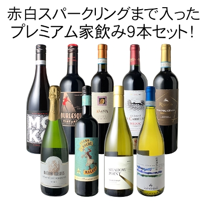 ワインセット プレミアム 家飲み ワイン 9本 セット 赤ワイン 白ワイン スパークリングワイン 飲み比べ パーティー ハロウィン