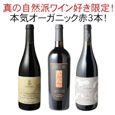 ワインセット 真の自然派ワイン好き限定 本気 オーガニック 赤ワイン 3本 セット ガチオーガニック