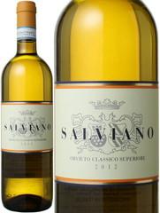 オルヴィエート・クラシコ 2018 サルヴィアーノ 白 Olvieto Classico Superiore / Salviano   スピード出荷