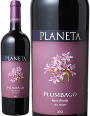プラムバーゴ 2015 プラネタ 赤  Plumbago / Planeta  スピード出荷