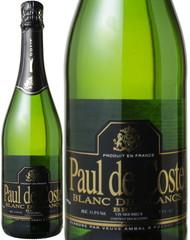 ポール・ド・コスト ブラン・ド・ブラン ブリュット NV 白  Paul de Coste Blanc de Blancs Brut NV   スピード出荷