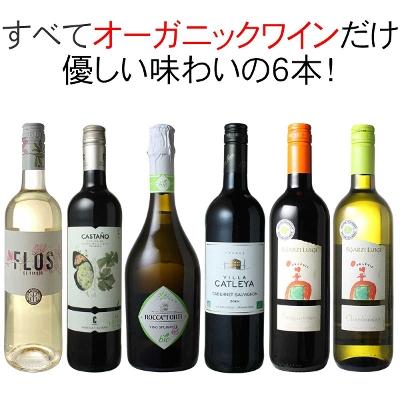 ワインセット オーガニック ワイン 6本 セット ユーロリーフ認定入 赤ワイン 白ワイン フランス イタリア スペイン 家飲み 御祝 誕生日 ハロウィン ギフト プレゼント