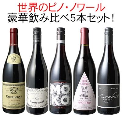 ワインセット ピノ・ノワール 5本 セット 赤ワイン 世界のピノ・ノワールを飲み比べ 家飲み 御祝 誕生日 ハロウィン ギフト パーティー