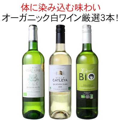 ワインセット オーガニック 白ワイン 3本 セット ユーロリーフ認定入 金賞入 家飲み 御祝 誕生日 ハロウィン ギフト プレゼント オーガニック白