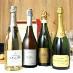 シャンパンのブドウ品種 ピノ・ノワール、シャルドネ、ピノ・ムニエの味わいの違いは?